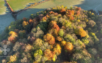 drone-agriculture-dannyfarm-sussex-uk