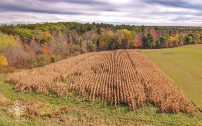 drone-agriculture-new-england-usa